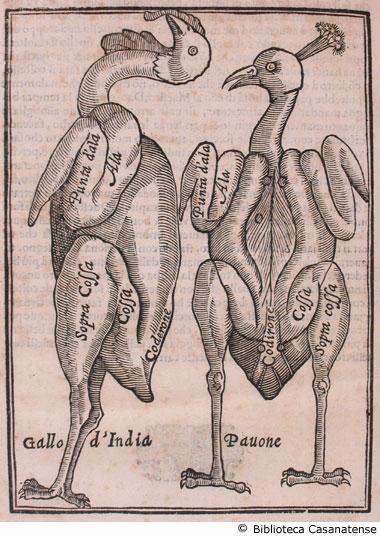 Vincenzo Cervio, Il trinciante di Vincenzo Cervio, 1593. Giulio Burchioni e Tipografia Gabania, Rome, Italy.